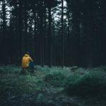Outdoor Photography, Yellow Jacket, Instagram, Nils Leonhardt