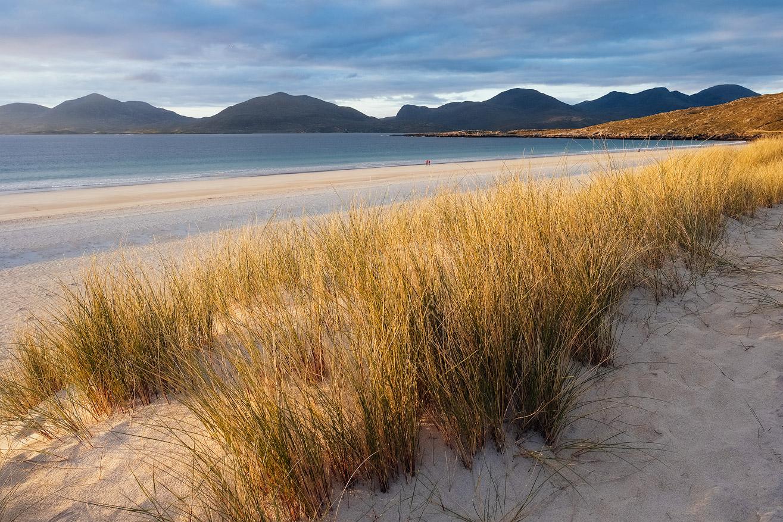Golden Luskentyre, Isle of Harris, Scotland by Nils Leonhardt