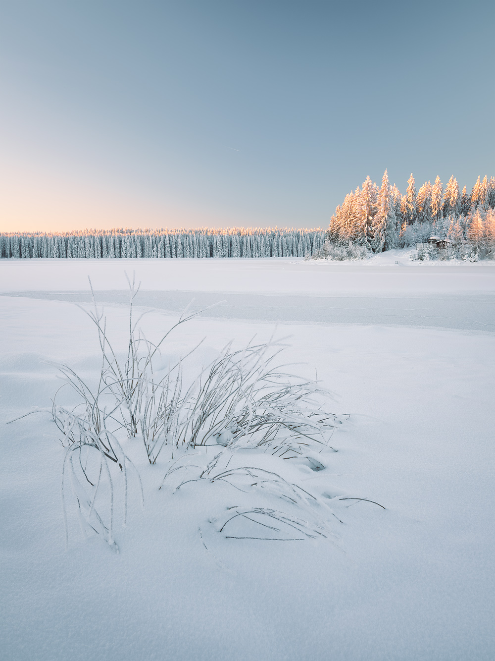 Frosty Morning, Ore Mountains, Germany by Nils Leonhardt
